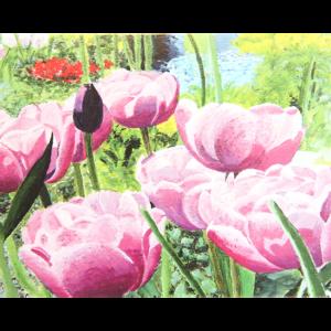 Kort med maleri av rosa peoner i en eng. Bilde.