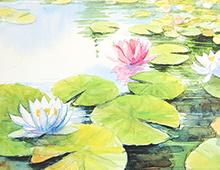 Kort med maleri av en rosa og hvite vannliljer på et vann. Bilde.
