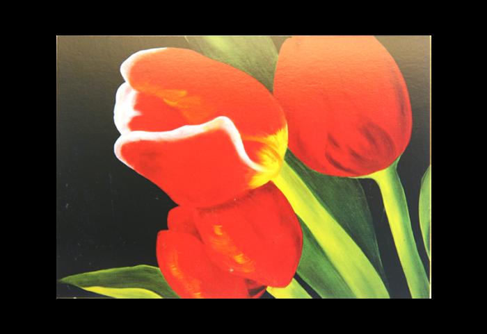 Kort med maleri av nærbilde av røde tulipaner. Bilde.