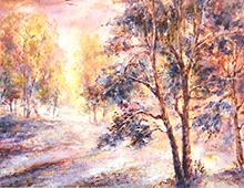 Kort med maleri av løvskog i morgensol. Bilde.