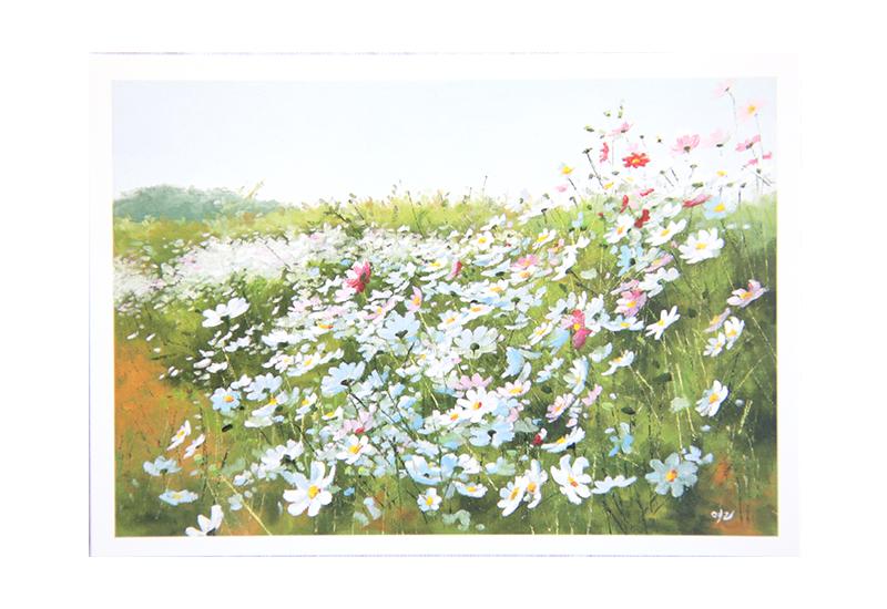 Kort med motiv av eng med hvite og rosa prestekrager. Bilde.