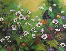 Motiv av sommerfugler ien eng av blant annet prestekrager. Bilde.