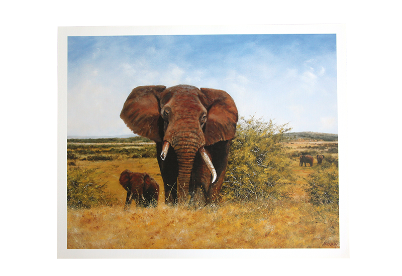 Reproduksjon med motiv av en elefant med brukket støttann på savannen sammen med ungen sin. Bilde.