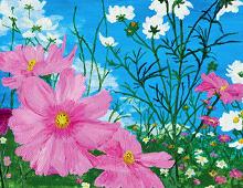 Rosa og hvite blomster eng. Bilde.