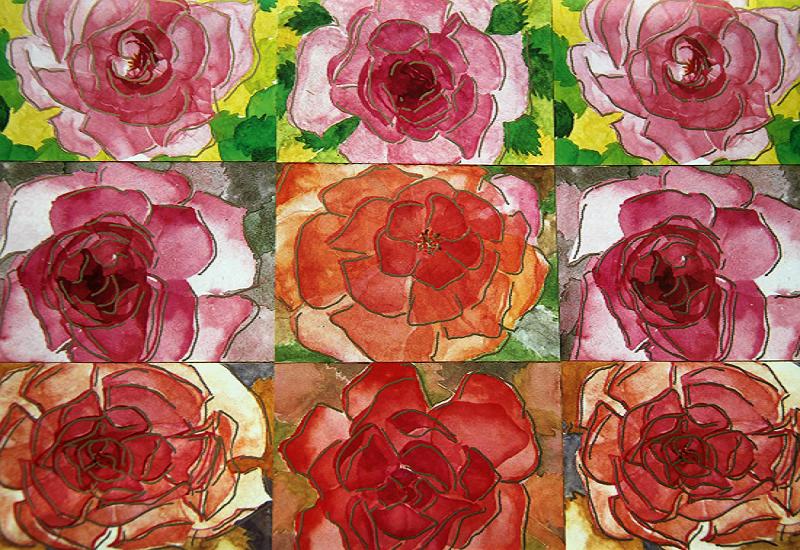 Sommergavepapir med roser i forskjellige rosatoner. Bilde