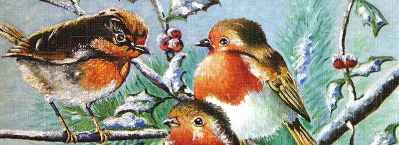 Kort med motiv av småfugler om vinteren. Bilde.
