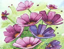 Blålilla og lilla blomstereng.