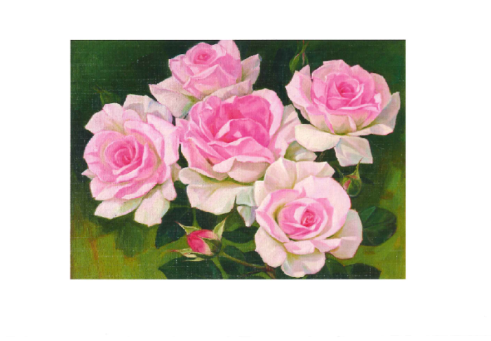 Bilde av rosa roser. Bilde.