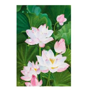 Dobbeltkort med eksotiske liljer. Bilde.
