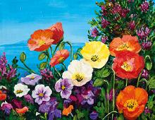 Nydelig dobbeltkort med fargerike blomster. Bilder.