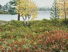 Originalmaleri av munnmaler Sigrid Slora. Naturmotiv, trær og vann. Bilde.