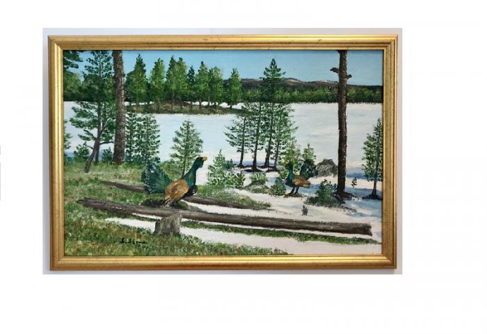 Originalmaleri av munnmaler Sigrid Slora. Naturmotiv av tiurleik i skogen. Bilde.