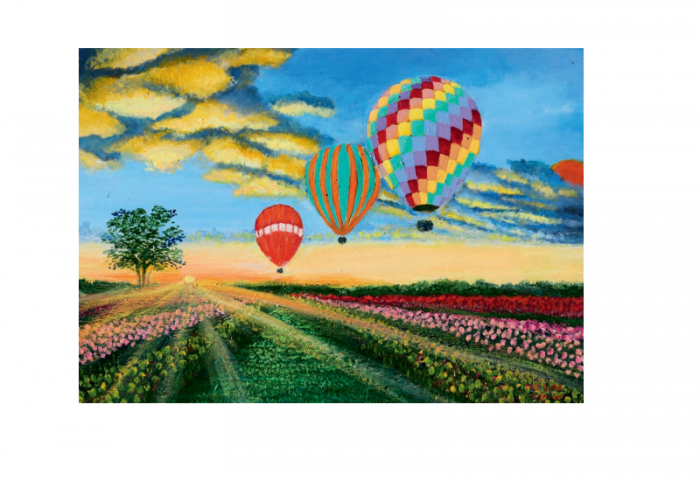 Tre luftballonger som svever over blomstereng. Bilde.