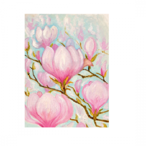 Magnolia i vårblomst. Bilde.