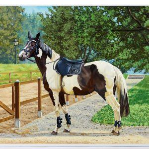 Puslespill med motiv av flekkete hest. Bilde.